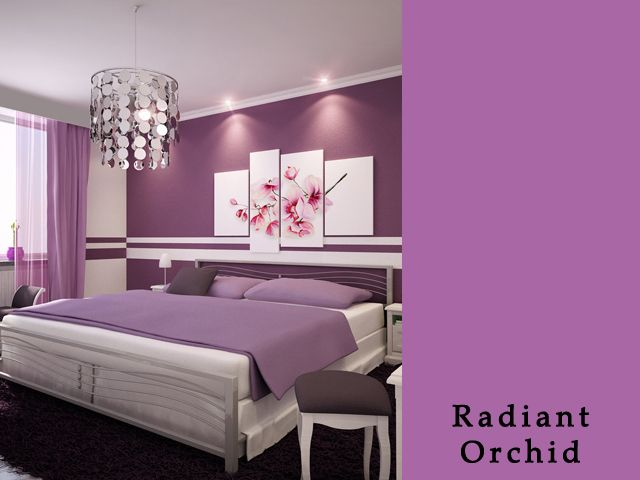 radiant orchid3