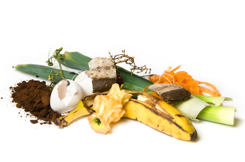 Fruit and other things that can be used as compost