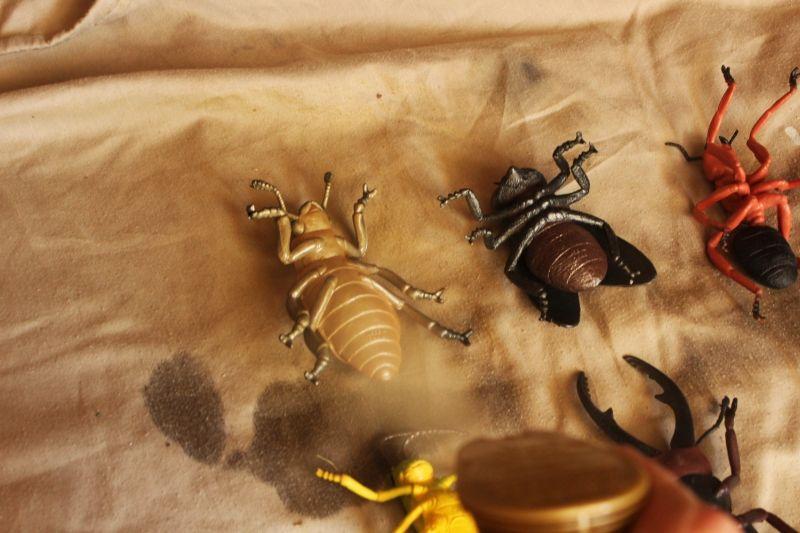 Diy comment fabriquer des objets d co avec des insectes en plastique brico - Fabriquer des objets ...